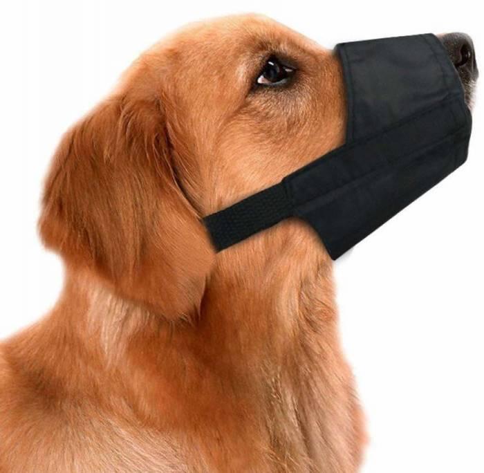 CooZero Dog Muzzles Suit, 7 PCS Anti Biting Barking Pet Muzzles Adjustable Dog Muzzle Mouth Cover for Small Medium Large Extra Dog Black
