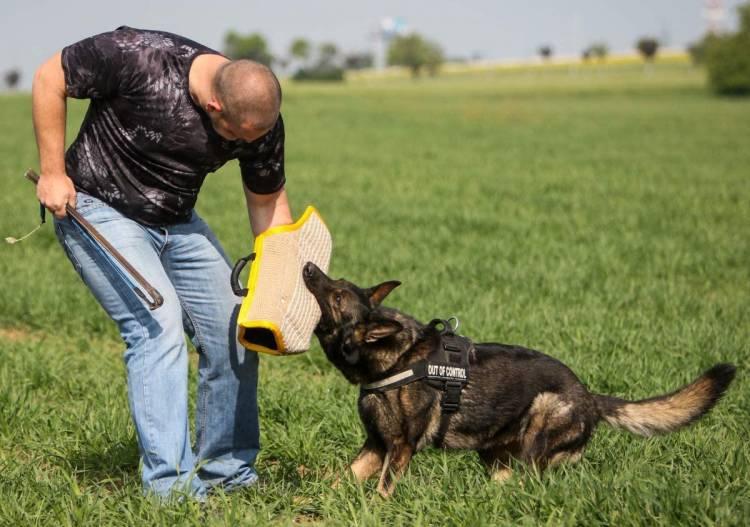 Durable Dog Bite Sleeve Strong Jute Training Equipment