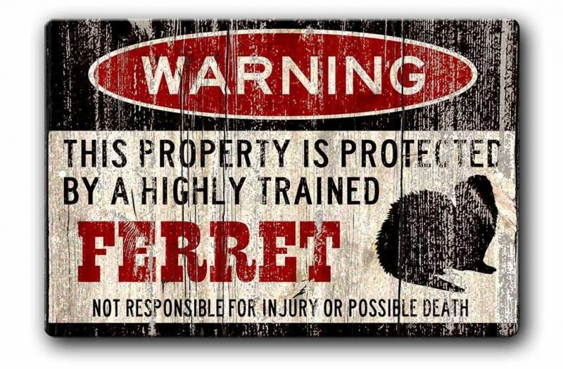Ferret Warning Sign, Ferret Gift