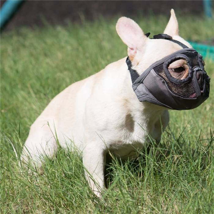 JYHY Short Snout Dog Muzzles Adjustable Breathable Mesh Bulldog Muzzle for Biting Chewing Barking Training Dog Mask
