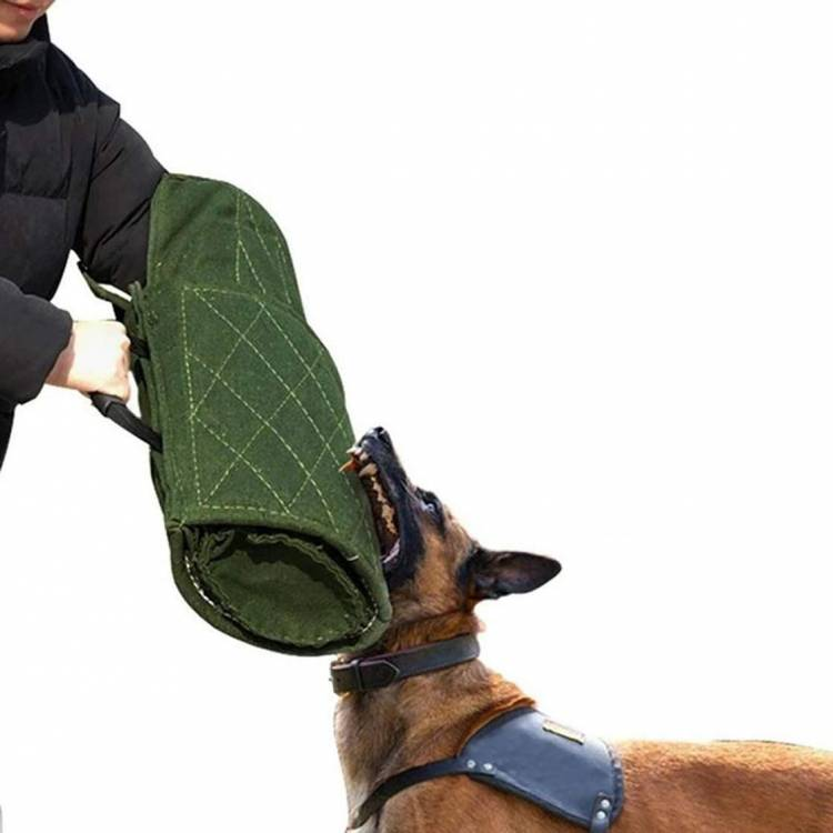 Morezi Dog Bite Sleeve Training Protection