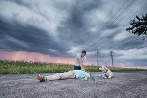 How Do Dogs Detect Seizure