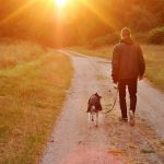 How Do Dogs Help With Anxiety?