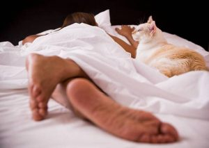Why Does My Cat Bite Me While I Sleep